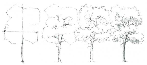 media studies  hand drawing