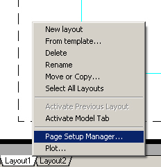 Page options.jpg